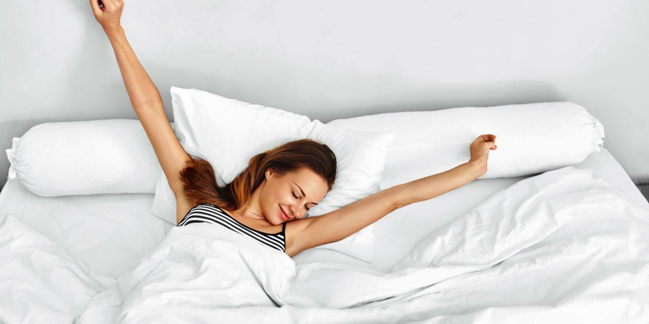 Pourquoi sommes-nous couche-tard ou lève-tôt ?