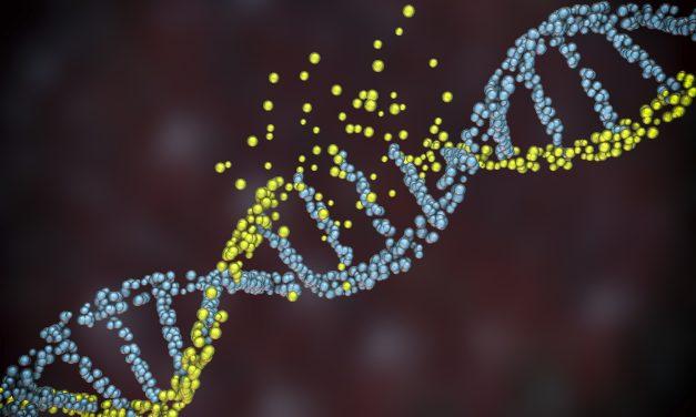 Un manque de sommeil risque d'endommager notre ADN