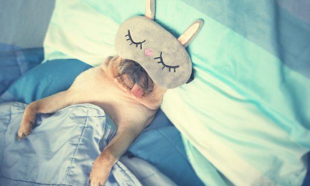 Un bandeau connecté pour améliorer la qualité de notre sommeil